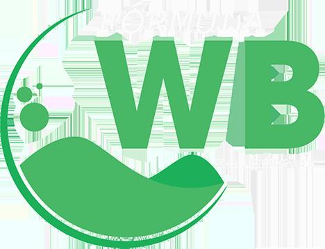 Fórmula WB - Soluções Web